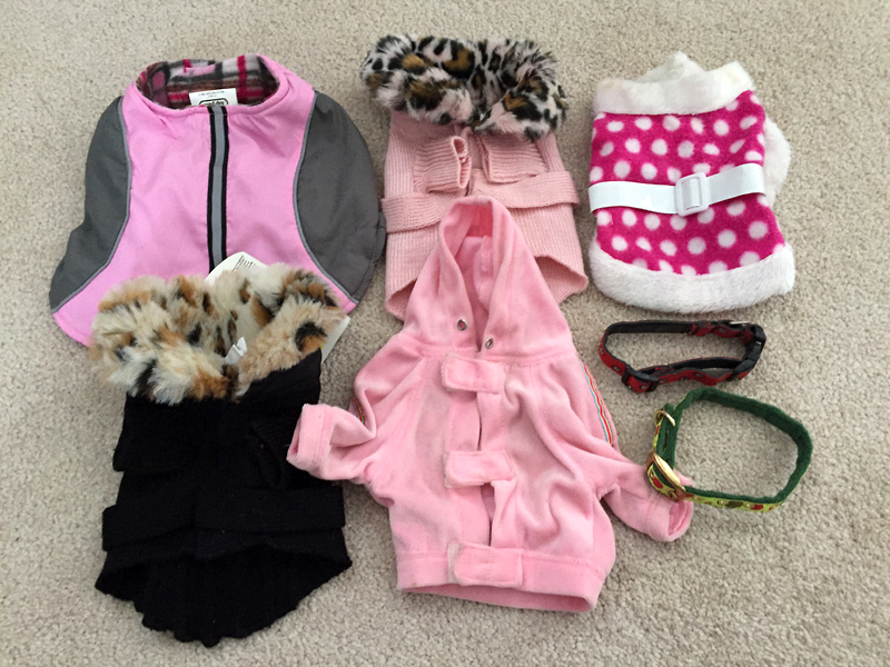 Puppy Outfits